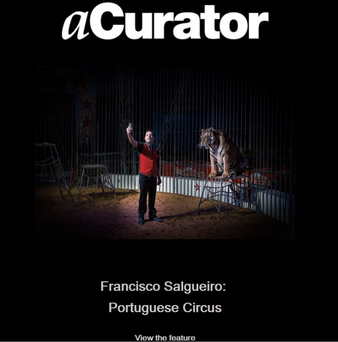 Editorial in one of the most influential fine art digital magazines in the United States: aCurator (January 2015) www.acurator.com